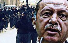 سؤال المرحلة.. هل يقتل أردوغان الاقتصاد التركي، أم يقتل الاقتصاد التركي أردوغان؟