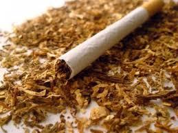 البنك الدولي يوصي الحكومة بزيادة الضريبة على التبغ 20% سنوياً