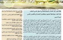 طلقة تنوير 62: العسكر والديموقراطية في السياق العربي المعاصر