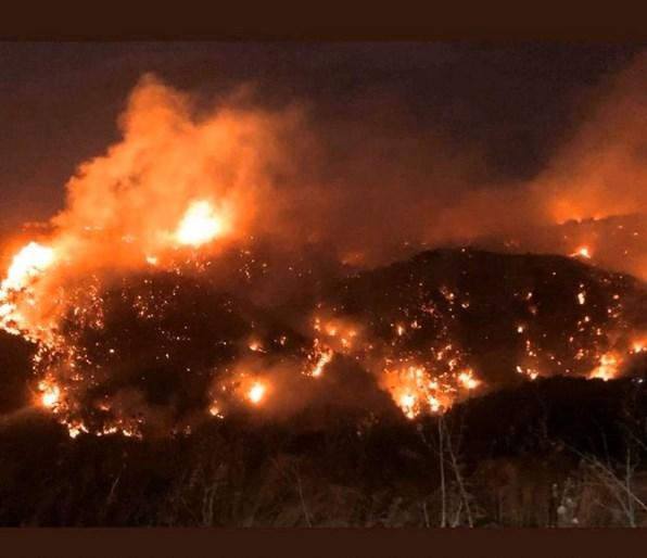 الحرائق تلتهم مساحات واسعة من لبنان فيما تنحسر بفعل عمليات المطافي في سوريا/ فيديو