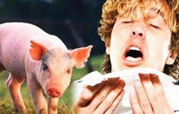 وزارة الصحة: 124 حالة إصابة بفيروس انفلونزا الخنازير وتوقع المزيد