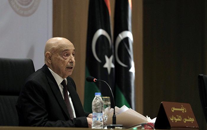 القبائل الليبية تعلن أنها ستحارب قوات الاحتلال التركي ورئيس البرلمان الليبي يدعو للاستعانة بالعرب حال دخول هذه القوات