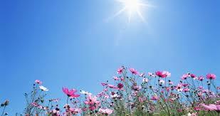 أجواء ربيعية معتدلة في المرتفعات وحارة ببقية المناطق اليوم وغدًا