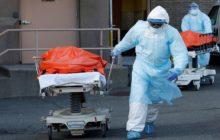 تصاعد مُقلق.. وزارة الصحة تعلن اليوم الثلاثاء تسجيل 29 وفاة و5124 إصابة جديدة بالكورونا ليصبح المجموع الكلي 402282