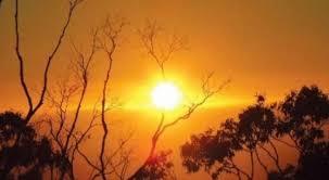 رغم الانخفاض الطفيف.. أجواء حارة نسبيا في أغلب المناطق اليوم