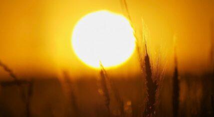 اجواء صيفية باغلب المناطق اليوم الجمعة، وغدا تدخل الموجة الحارة