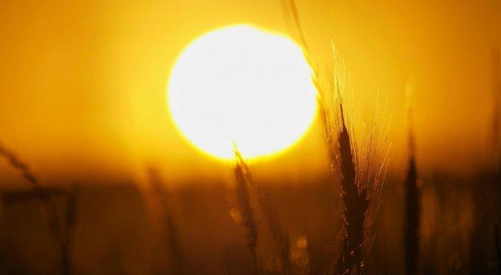 أجواء معتدلة في اغلب المناطق اليوم.. وارتفاع الحرارة غدا وبعده
