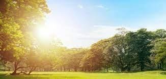 الصيف يؤكد حضوره.. كتلة هوائية حارة تعبر المملكة ابتداءً من اليوم